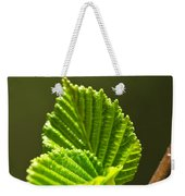 Green Spring Leaves Weekender Tote Bag by Elena Elisseeva