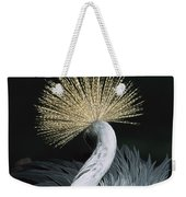 Grey Crowned Crane Balearica Regulorum Weekender Tote Bag