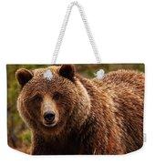 Grizzly Bear, Yukon Weekender Tote Bag