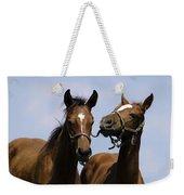 Horse Foul Play Iv Weekender Tote Bag