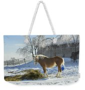 Horse On Maine Farm After Snow And Ice Storm Weekender Tote Bag