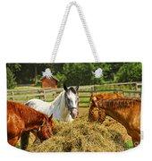 Horses At The Ranch Weekender Tote Bag by Elena Elisseeva
