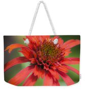 Hot Papaya Coneflower Squared Weekender Tote Bag