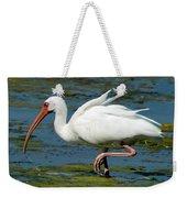 Ibis 2 Weekender Tote Bag