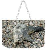 Injured Harbor Seal Weekender Tote Bag