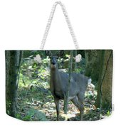 Inquisitive Weekender Tote Bag