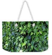 Ivy Wall Weekender Tote Bag