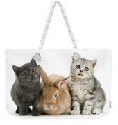 Kitten And Rabbit Weekender Tote Bag