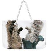 Kittens And Watering Can Weekender Tote Bag