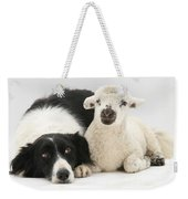 Lamb And Border Collie Weekender Tote Bag
