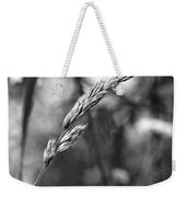 Lazy Afternoon Monochrome Weekender Tote Bag