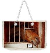 Leonardo Weekender Tote Bag
