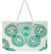 Lily Anther Lm Weekender Tote Bag