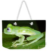 Limon Giant Glass Frog Weekender Tote Bag