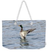 Mallard Duck Showing Off Weekender Tote Bag