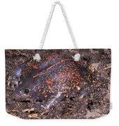 Mexican Burrowing Toad Weekender Tote Bag