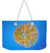 Micrasterias Weekender Tote Bag by Michael Abbey and Photo Researchers