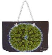 Micrasterias Sp. Algae Lm Weekender Tote Bag