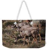 Mule Deer Bucks Weekender Tote Bag