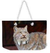 North American Lynx Weekender Tote Bag by Paul Fell