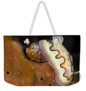 Nudibranch On Orange Sponge, Kimbe Bay Weekender Tote Bag