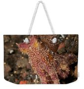 Ocellate Octopus With Two Blue Spots Weekender Tote Bag