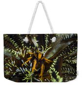 Orange And Brown Elegant Squat Lobster Weekender Tote Bag