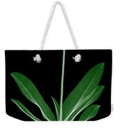 Orchid Plant X-ray Weekender Tote Bag