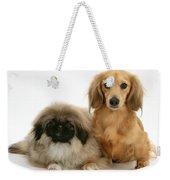 Pekingese And Dachshund Puppies Weekender Tote Bag by Jane Burton