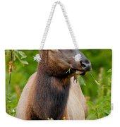Portrait Of A Bull Elk Weekender Tote Bag