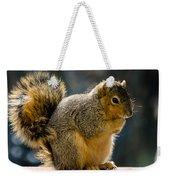 Praying Squirrel  Weekender Tote Bag