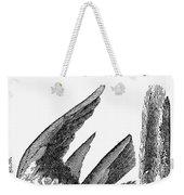 Printers Cut, 1825 Weekender Tote Bag