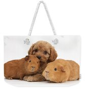 Puppy And Guinea Pigs Weekender Tote Bag