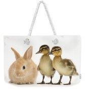 Rabbit And Ducklings Weekender Tote Bag