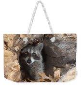 Raccoon Procyon Lotor Weekender Tote Bag