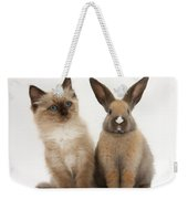 Ragdoll-cross Kitten And Young Rabbit Weekender Tote Bag