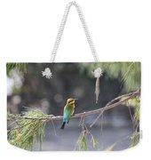 Rainbow Bee-eater V4 Weekender Tote Bag