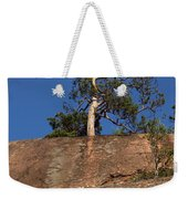 Red Pine Tree Weekender Tote Bag by Ted Kinsman