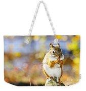 Red Squirrel Weekender Tote Bag by Elena Elisseeva