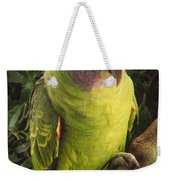 Red-tailed Amazon Amazona Brasiliensis Weekender Tote Bag