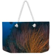 Red Whip Fan Coral With Diver, Papua Weekender Tote Bag