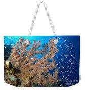 Reef Scene With Sea Fan, Papua New Weekender Tote Bag