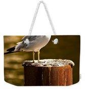 Ring-billed Gull On Pillar Weekender Tote Bag