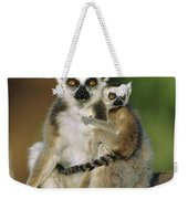Ring-tailed Lemur Mother And Baby Weekender Tote Bag
