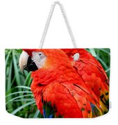 Scalet Macaw Weekender Tote Bag