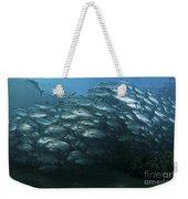 School Of Trevally Swimming By, Bali Weekender Tote Bag