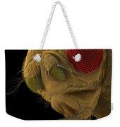 Sem Of A Mutant Fruit Fly Weekender Tote Bag