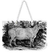 Sheep, C1800 Weekender Tote Bag