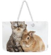Silver Tabby Cat And Lionhead-cross Weekender Tote Bag