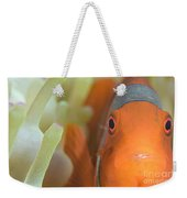Spinecheek Anemonefish In Anemone Weekender Tote Bag